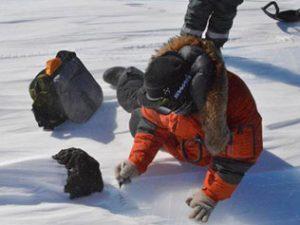 Scoperta in Antartide enorme meteorite di 18 chili