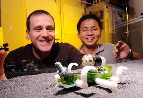 Una lucertole robot potrebbe essere mandata su Marte