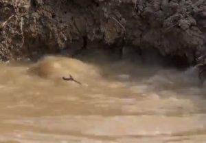 Mantova: l'acqua ribolle nella Terra!