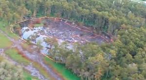 Usa, gli alberi sprofondano: inghiottiti in un istante