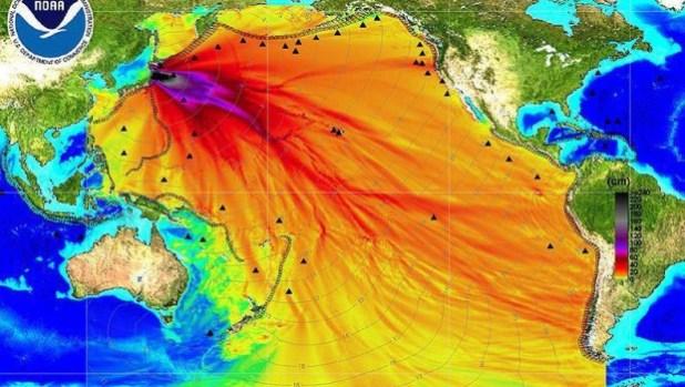 Fukushima il disastro del mare tre anni dopo