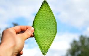 Creata la prima foglia artificiale