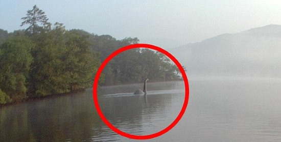 Immortalato il Mostro di Loch Ness