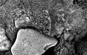 Scoperta croce celtica su Marte