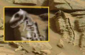 Fossile di rettile su Marte
