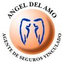 Angel del Amo Agente de seguros vinculado