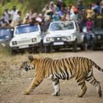 10 vinkkiä ympäristöystävällisempään reissuun