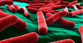 6 Aspectos Importantes En La Selección De Superficies Antibacterianas