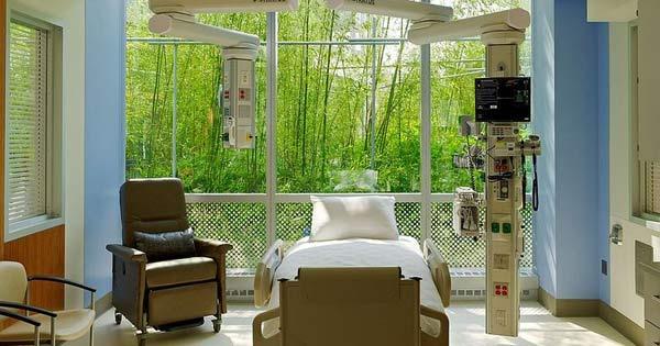 El Diseño De Hospitales Llamado Biofílico