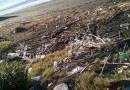 Salerno, mare inquinato da rifiuti e reflui: la denuncia di un cittadino