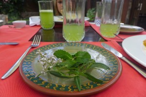 lemonade with herbs on a plate in front