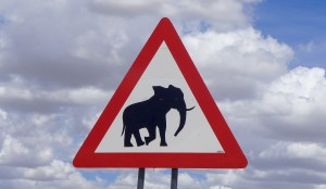 Elephant crossing sign with puffy clouds in the background