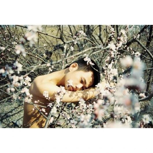 boy in bloom