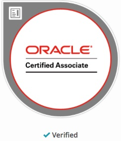 Oracle Standard Edition – Just love it! | oracle standard edition