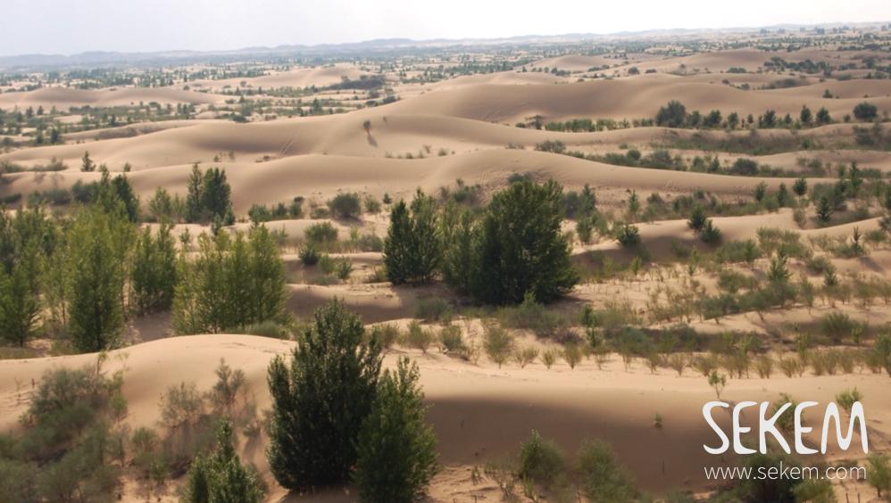 The Kubuqi Desert, Inner Mongolia