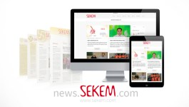 New SEKEM Insight