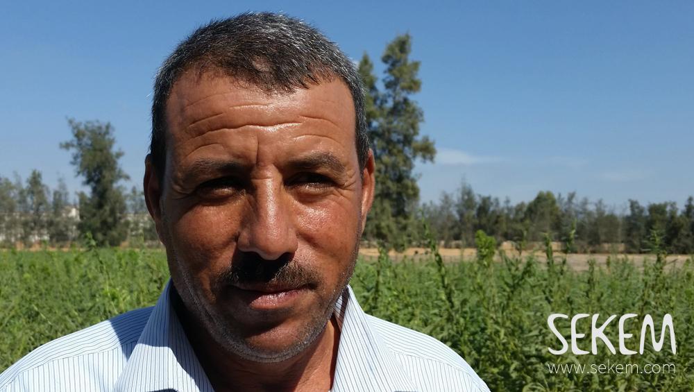 Mohamed-Mansour SEKEM