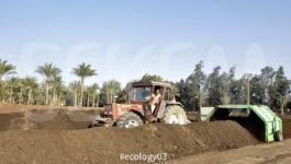 ecology03