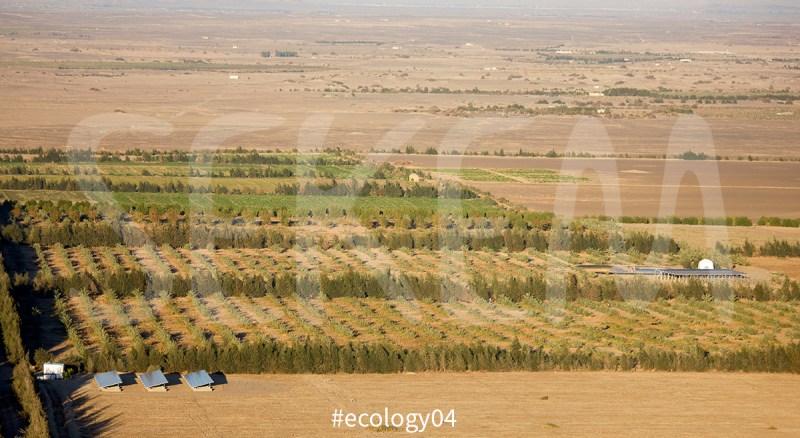 ecology04