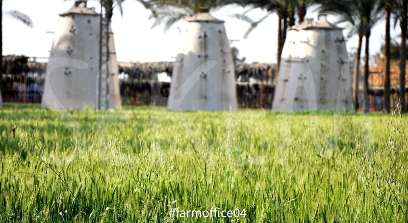 farmoffice04