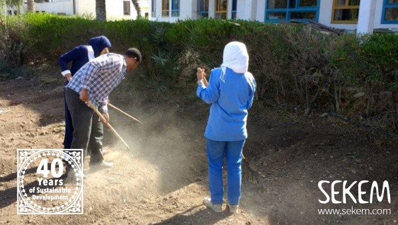 Students took over the responsibility for the SEKEM School garden.