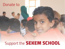 Support the SEKEM School