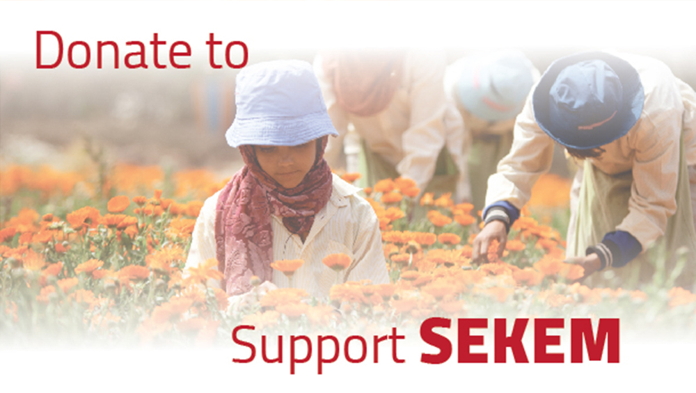 Funding for SEKEM's Impact Project