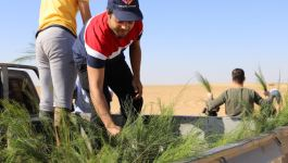 New Families and a School in the Desert: Greening the Desert Update