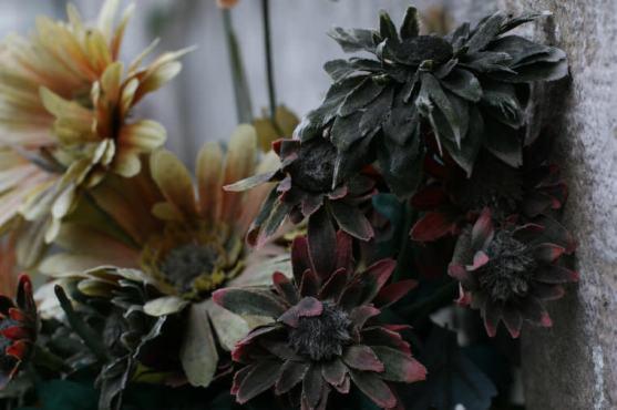 Venedig Blumen Ausw20