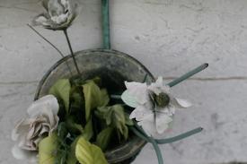 Venedig Blumen Ausw24