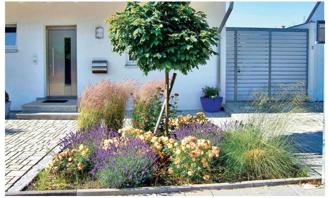 Pflegeleichter Garten Selbstde