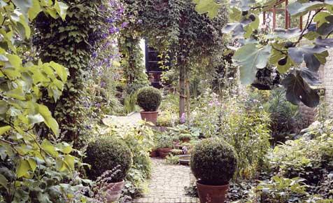Kleiner Garten Planung & Anlage Selbst De
