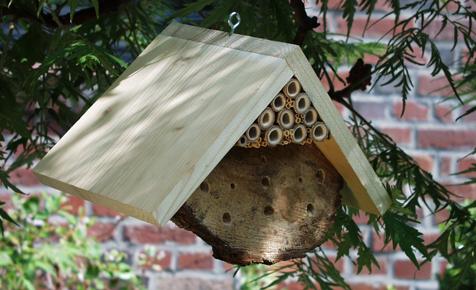 Insektenhotel  Rund ums Jahr  selbstde
