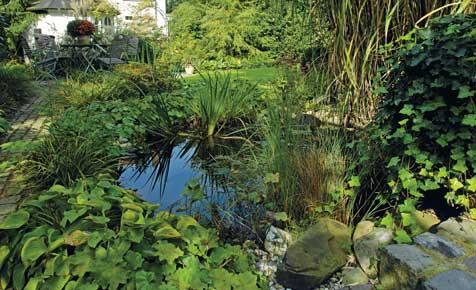 Gartenteich sanieren  Teich anlegen  selbstde