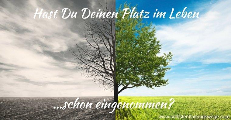 rsz_hast_du_deinen
