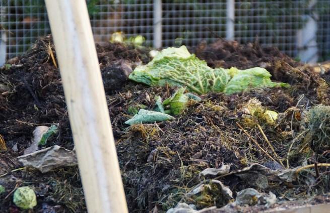 kompost selber machen - viel mehr als nur ein haufen, Terrassen ideen