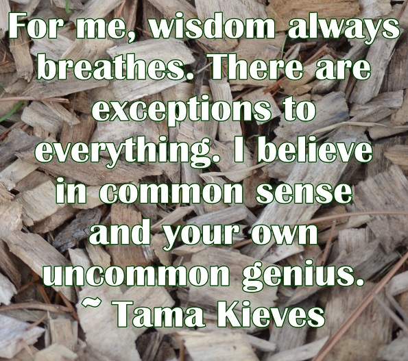 We all have the potential to learn how to access our uncommon genius.