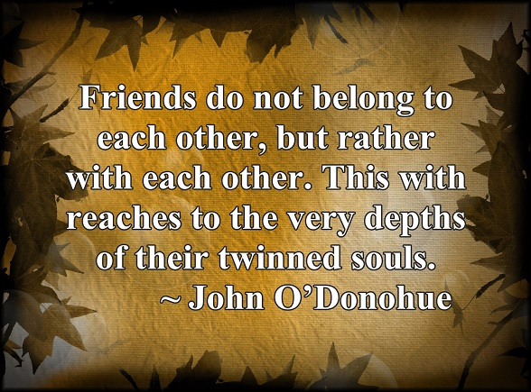 We always find great comfort by being and growing with our friends.