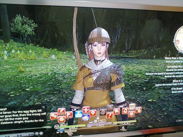 Final Fantasy XIV Beta Nielle