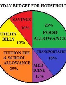 Pie chart also what is  selective school exam rh selectiveschoolexam