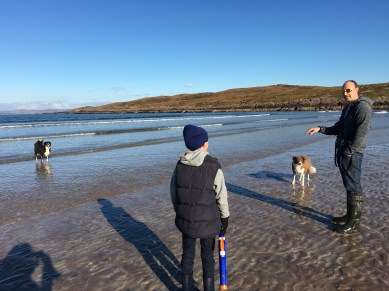 Great beaches for walking dogs