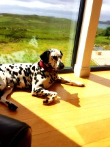 Dalmatian lounge Stac Polly Cottage