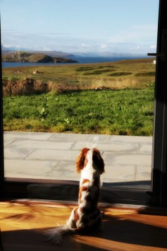 Looking out over Summer Isles from Stac Polly Cottage