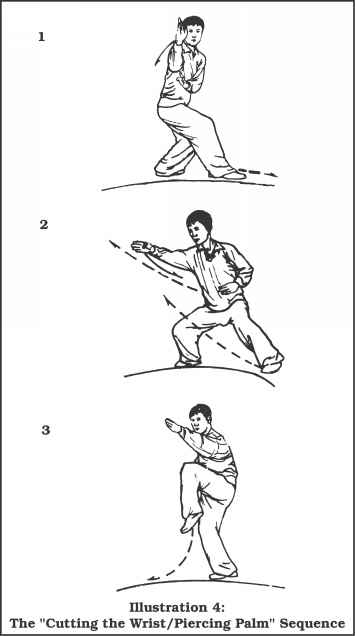 Martial Applications of the Cao Branch of Yin Style Ba Gua