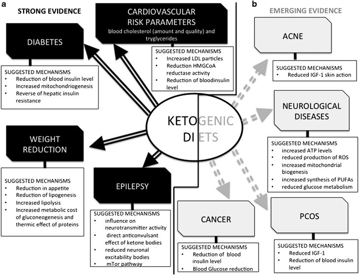 Ketogenic Diet: 25 Proven Benefits and How to Know if it's