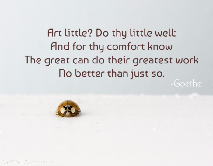 Art little? Do thy little well: And for thy comfort know The great can do their greatest work No better than just so. - Goethe