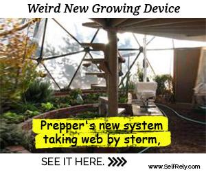 Weird New Growing Device