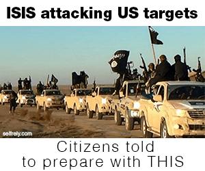 ISIS 2 copy