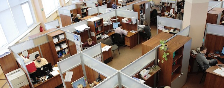 Employees in Cubicle Farm