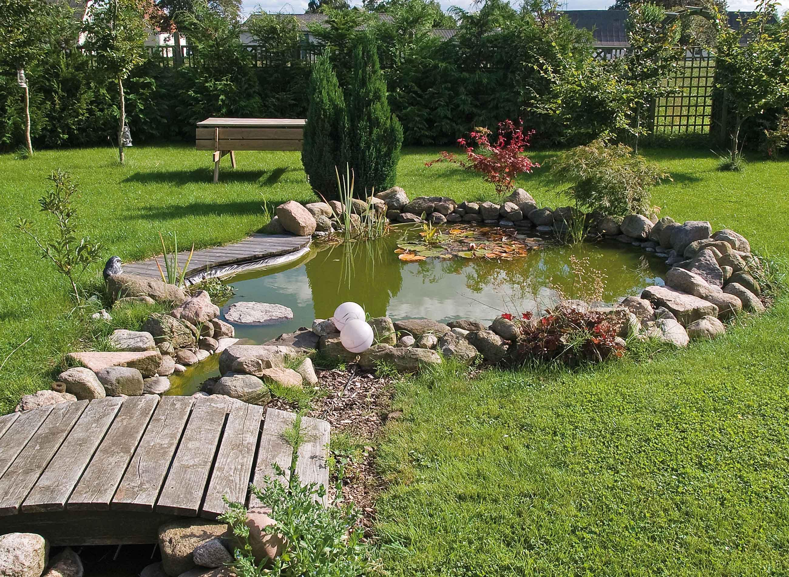 Amnagement bassin extrieur Lille  Cration tang jardin